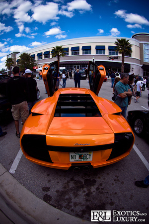 Exotic and Luxury Cars 2009