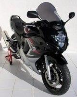 Ermax et... le Suzuki GSX-F 650 2008