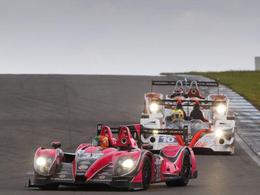 European Le Mans Series: c'est déjà 2013...
