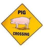 Des panneaux commémoratifs pour les cochons morts sur la route