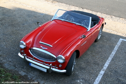 Photos du jour : Austin Healey 3000 MkII