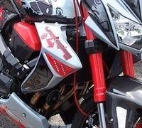 Kawasaki Z1000 by Gator Customs