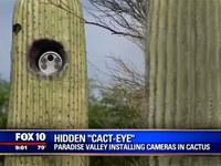 Insolite : un radar caché dans un cactus aux Etats-Unis