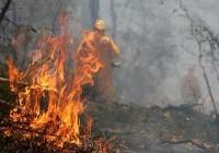 [Sondage de la semaine]: Incendies en Australie+F1= folie ?