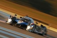 12h de Sebring: Peugeot n'ira pas chercher la victoire à tout prix !