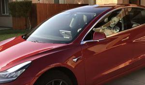 Le Smart Summon de la Tesla Model 3 détourné pour Halloween