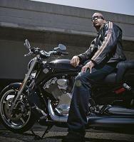 Nouveauté 2009 - Harley Davidson: Le V-Rod prend du muscle