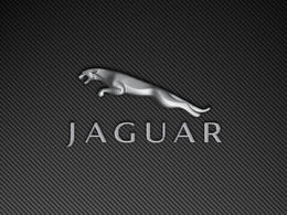 Jaguar a le logo préféré des Français