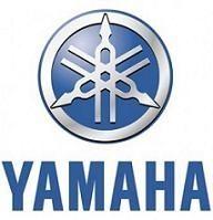 Economie - Yamaha: La crise n'a que faire des titres mondiaux