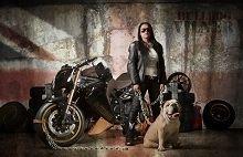 Actualité moto - Tuning: Vilner donne du chien à la Triumph Speed Triple