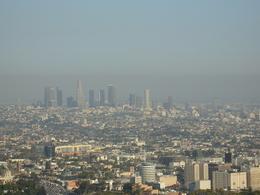 Etude: la pollution atmosphérique endommagerait le cerveau