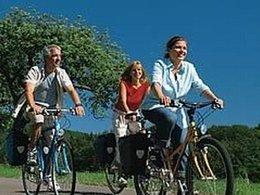 Environ 4,3 millions de vélos vendus en Allemagne chaque année