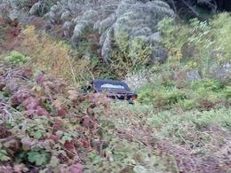 VDM : il rate un virage et plante sa Honda S2000 au millieu d'un champ de plantes vénéneuses