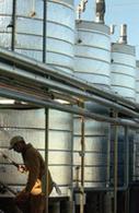 La plus grosse usine de production de biodiesel au monde est française