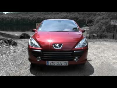 Peugeot 307 2.0 16v Féline : lionne de luxe