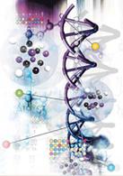 Biocarburant : la levure modifiée génétiquement !
