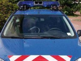 Insolite : le brigadier chef était une voiture volée (certifié Lapi à 78%)