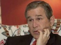 Les propos de Bush ne plaisent pas aux écolos