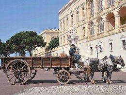 A Monaco, le cheval est roi !