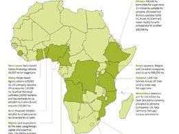 L'association Les Amis de la Terre dénonce l'accaparement des terres agricoles africaines au profit des agrocarburants