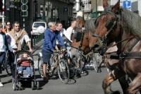 Etude : les Belges ont des connaissances sur l'écologie mais s'impliquent faiblement