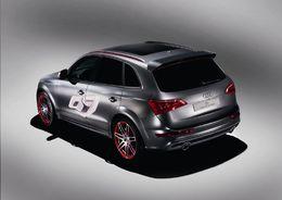 Wörthersee Tour 2009 : 408 ch pour l'Audi Q5 Custom concept