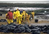 Naufrage du pétrolier l'Erika : comment évaluer le préjudice écologique ?