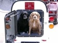 Remorque à chien : alternative à la sacoche.