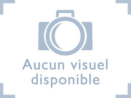 Sondage Caradisiac : duel Renault Vel Satis - Peugeot 607