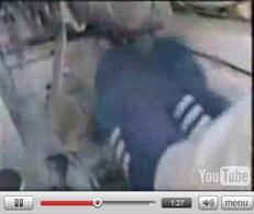 Vidéo : Walter Rohrl, c'est le(s) pied(s) !
