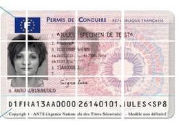 Information / retrait de points sur son permis : un sacré chantier !