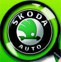 WRC: Skoda y pense toujours