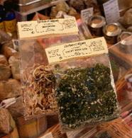 Japon : les algues, bonnes pour produire du méthane et du bioéthanol
