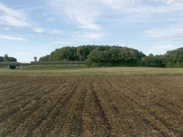 Circulation autoroutière : quel impact sur l'agriculture en Ile-de-France ?