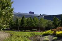 La Silicon Valley : la bosse des technologies vertes