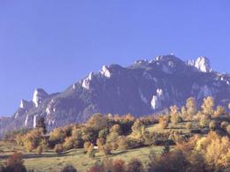 Le WWF s'oppose à la construction en Roumanie d'une route traversant un parc national des Carpates