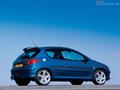 La p'tite sportive du lundi: Peugeot 206 RC !