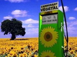 La production globale de biocarburants a atteint des records historiques en 2010