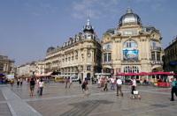 Montpellier : tout savoir sur ses transports écolos