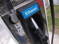 Biocarburants : les prix agricoles risquent d'augmenter