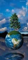 Les collectivités : tout un programme écolo