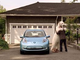 Fait divers : Une Toyota Prius ravagée par un ours
