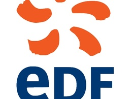 Mondial de Paris 2010 : des essais de véhicules électriques organisés par EDF