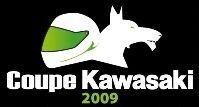 Coupe Kawasaki ER-6 2009 : les premières infos