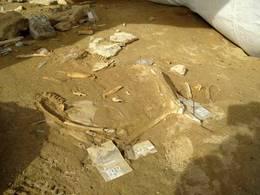 Circuit F1 de Flins : un site archéologique découvert, la fin de l'histoire ?