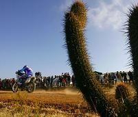 Dakar : Viladoms remporte la 10ème étape