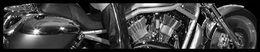 Moto & Sexy : V-rod en noir et blanc