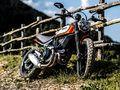 Nouveauté - Ducati: la nouvelle Scrambler est encore plus Icon.