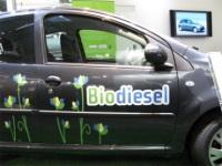 Italie : le pétrolier Eni mise sur les alternatives aux énergies fossiles