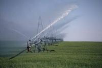 Ennemis jurés : eau et biocarburants